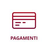 icona software pagamenti integrazioni